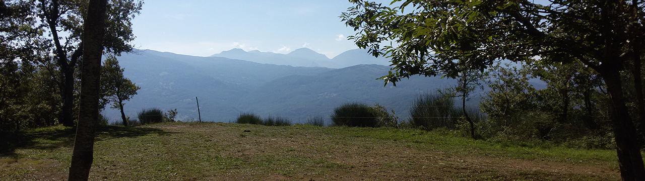 Serra Cerrosa