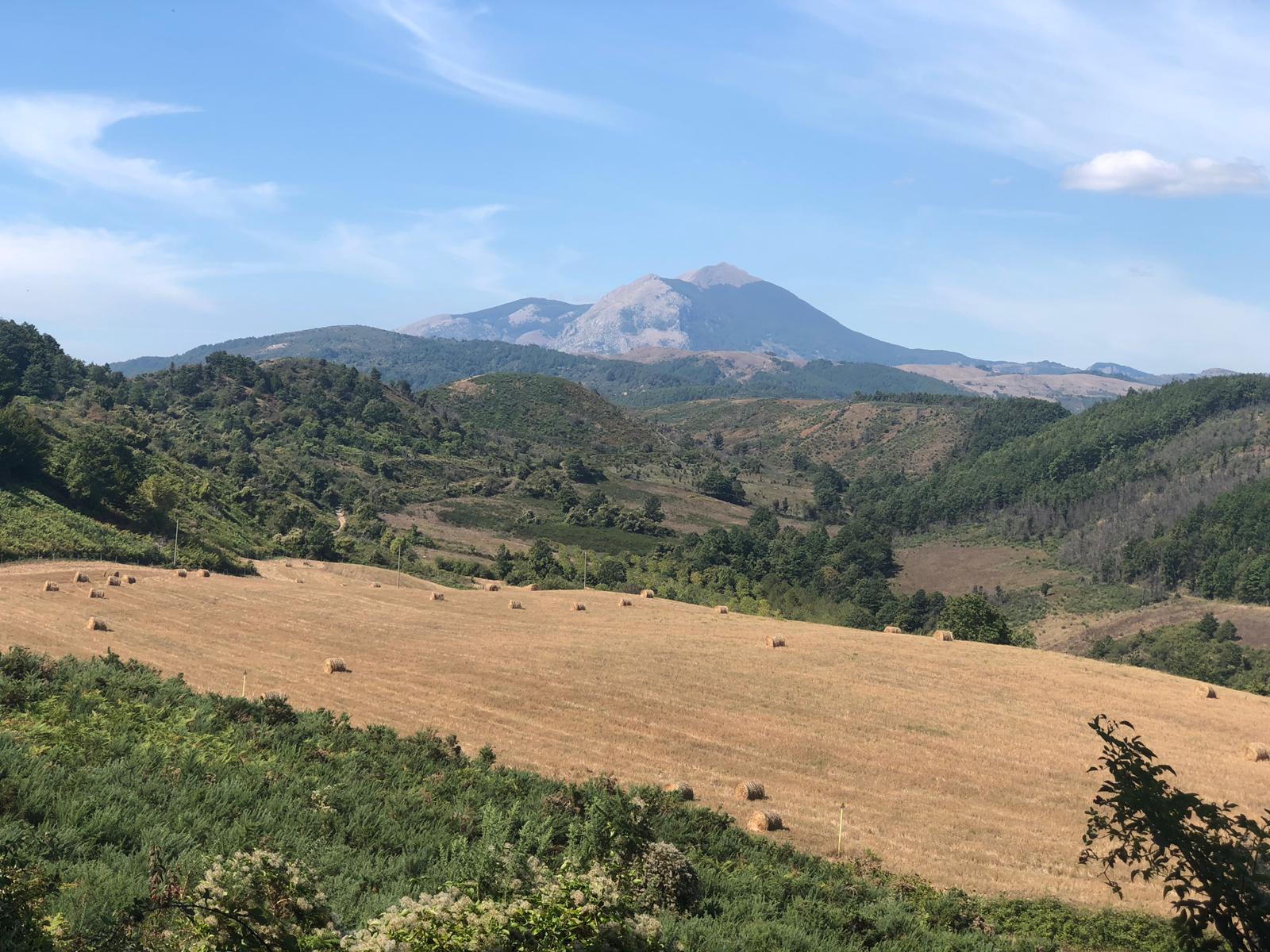 fardella-panorama-molte-alpe-serra-cerrosa